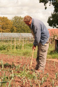 man tending vegetables at the Grange
