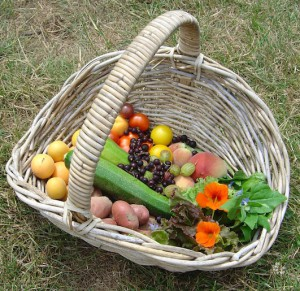 basket of summer vegetables