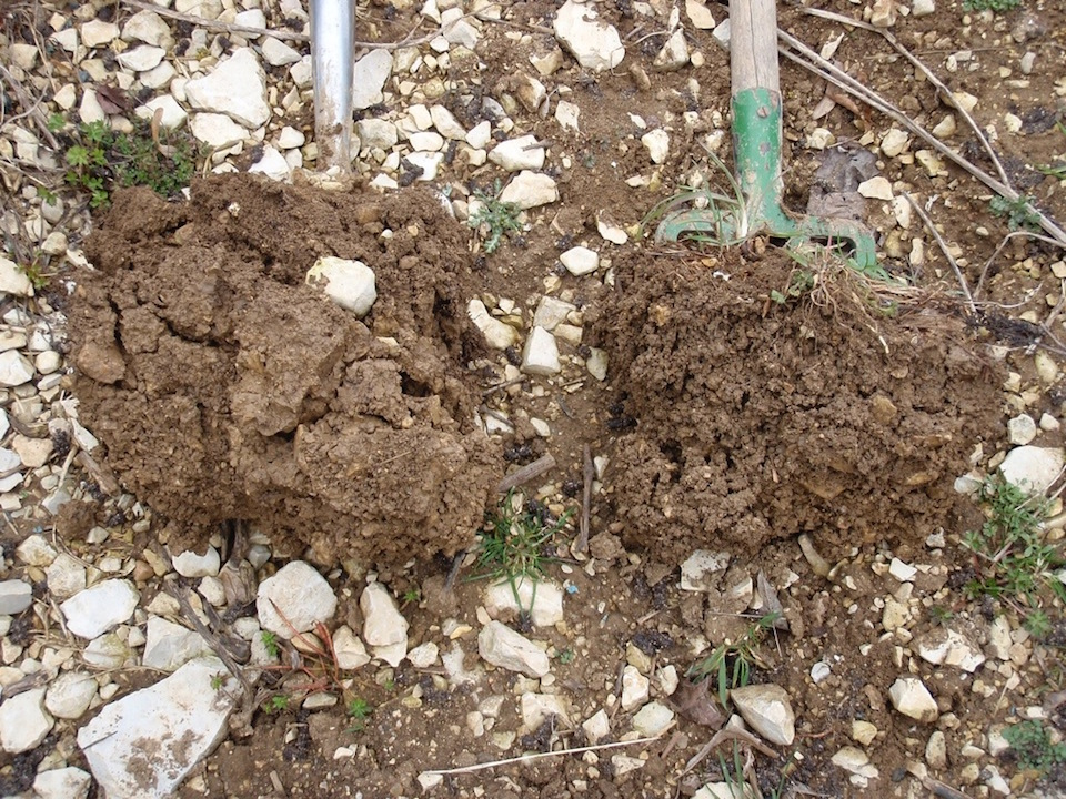 comparing conventional soil with biodynamically cultivated soil with the 500 preparation