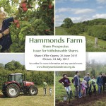 Hammonds Farm Prospectus