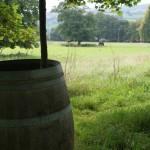 Barrel-cropped