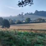 week lower fields