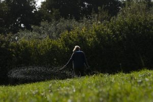 Marina O'Connell spraying the fields at Huxhams Cross Farm with biodynamic preparation