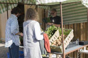 Bob Mehew at Huxhams Cross Farm veg stall